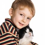 Dog, Cat, Gerbil? Help Your Tween Decide Which Pet They Can Bond With And Care For