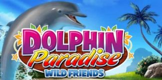 dolphin paradise wild friends