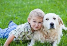 nurture your children in a better way by having pets