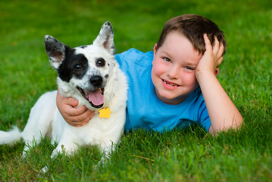 4 Tips to Select the Best Pet for Your Kid